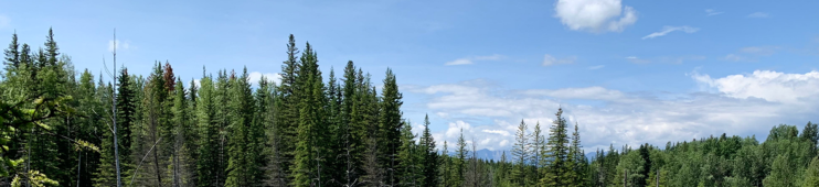 cropped-canadian-rockies-for-nsm.png
